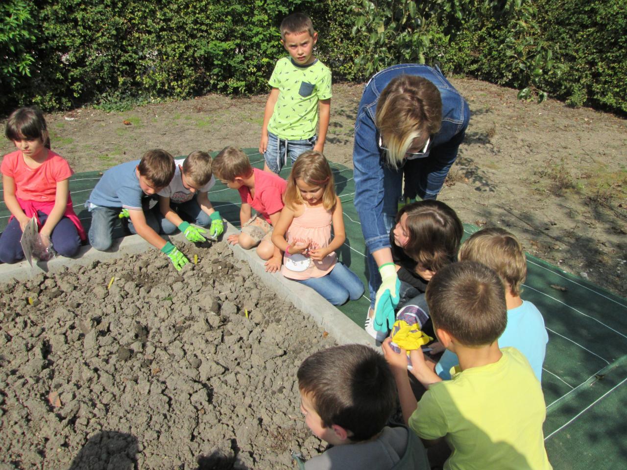 """Le jardinage par le groupe """"les petits malins"""""""