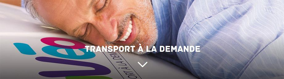 Transport a la demande